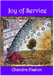 Joy of Service_front cover