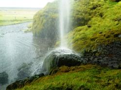 Nature rejuvinates the land