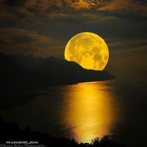 golden super full moon rises_n