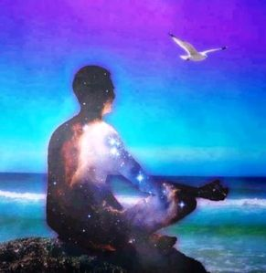 starry-meditator-and-seagull_n